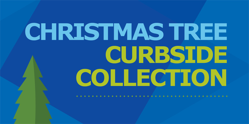 Christmas Tree Curbside Collection